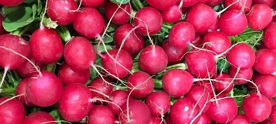 Radish & Rhubarb
