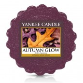 Yankee Candle Autumn Glow Wax Tart