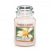 Yankee Candle Champaca Blossom Geurkaars Large Jar Candle (150 branduren)