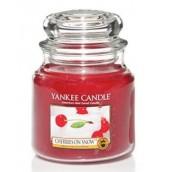 Yankee Candle Cherries on Snow Medium Jar