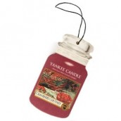 Yankee Candle Cranberry Chutney Car Jar