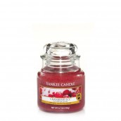 Yankee Candle Cranberry Ice Geurkaars Small Jar Candle (40 branduren)