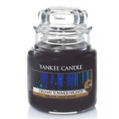 Yankee Candle Dreamy Summer Nights Geurkaars Small Jar Candle (40 branduren)