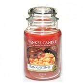 Yankee Candle Frankincense Geurkaars Large Jar Candle (150 branduren)