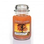 Yankee Candle Honey Glow Geurkaars Large Jar Candle (150 branduren)