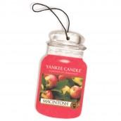 Yankee Candle Macintosh Car Jar