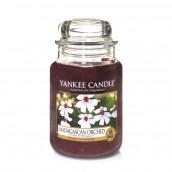 Yankee Candle Madagascan Orchid Geurkaars Large Jar Candle (150 branduren)