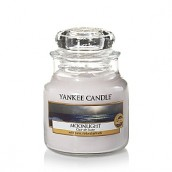 Yankee Candle Moonlight Geurkaars Small Jar Candle (40 branduren)