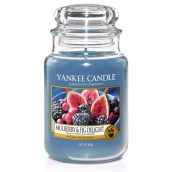 Yankee Candle Driftwood Large Jar