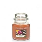 Yankee Candle Oud Oasis Geurkaars Medium Jar Candle (90 branduren)