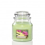 Yankee Candle Pineapple Cilantro Geurkaars Medium Jar Candle (90 branduren)