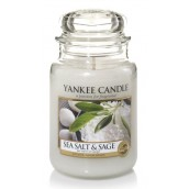 Yankee Candle Sea Salt & Sage Geurkaars Medium Jar Candle (90 branduren)
