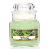 Yankee Candle Wild Mint Small Jar
