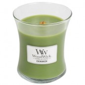 WoodWick Evergreen Medium Jar Candle