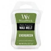 WoodWick Evergreen Wax Melt