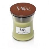 WoodWick Fern Mini Jar Candle