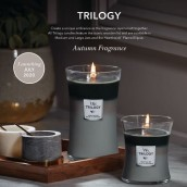 WoodWick Mountain Air Trilogy Ellipse Hearthwick Jar Candle