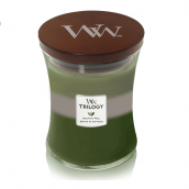 WoodWick Mountain Trail Medium Jar Candle
