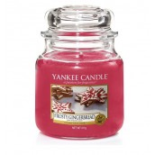 Yankee Candle Frosty Gingerbread Medium Jar