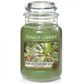 Yankee Candle Snow-Dusted Bayberry Leaf Geurkaars Large Jar Candle (150 branduren)