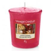 Yankee Candle After Sledding Votive Sampler