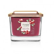 Yankee Candle Candied Cranberry Small Vessel