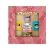 Yankee Candle The Last Paradise 1 Small Jar + 3 Votives Gift Set