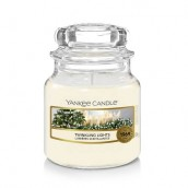 Yankee Candle Candlelit Cabin Small Jar Candle