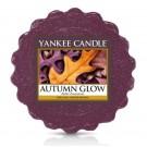 Yankee Candle Autumn Glow Wax Tart