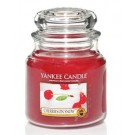 Yankee Candle Cherries on Snow Medium Jar
