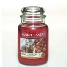 Yankee Candle Moroccan Argan Oil Geurkaars Large Jar Candle (150 branduren)
