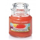 Yankee Candle Passion Fruit Martini Geurkaars Small Jar Candle (40 branduren)