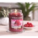 Yankee Candle Raspberry Sorbet Geurkaars Large Jar Candle (150 branduren)