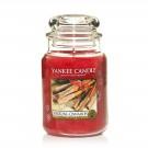 Yankee Candle Sparkling Cinnamon Geurkaars Large Jar Candle (150 branduren)
