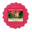 Yankee Candle Tropical Jungle Wax Tart
