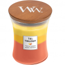 WoodWick Tropical Sunrise Medium Jar Candle