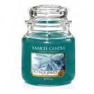 Yankee Candle Icy Blue Spruce Medium Jar