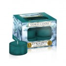 Yankee Candle Icy Blue Spruce Tea Lights