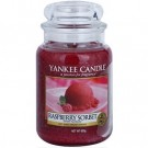 Yankee Candle Raspberry Sobet Large Jar