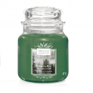 Yankee Candle Evergreen Mist Geurkaars Medium Jar Candle