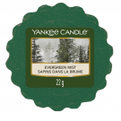 Yankee Candle Evergreen Mist Wax Tart