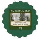 Yankee Candle Evergreen Mist Wax Tart