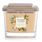 Yankee Candle Kumquat & Orange Medium Vessel